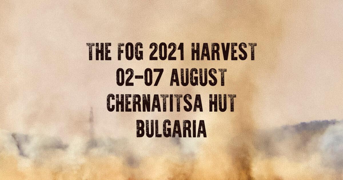 the fog larp 2021 harvest